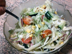 Temperar salada copy