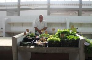Vendedor de Legumes legumes-Art copy