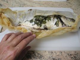 peixe saido do forno1